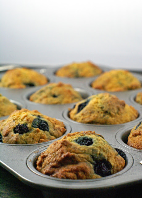 Not too sweet, but oh-so tasty, these blueberry yogurt muffins are a great start to the morning or an afternoon snack.